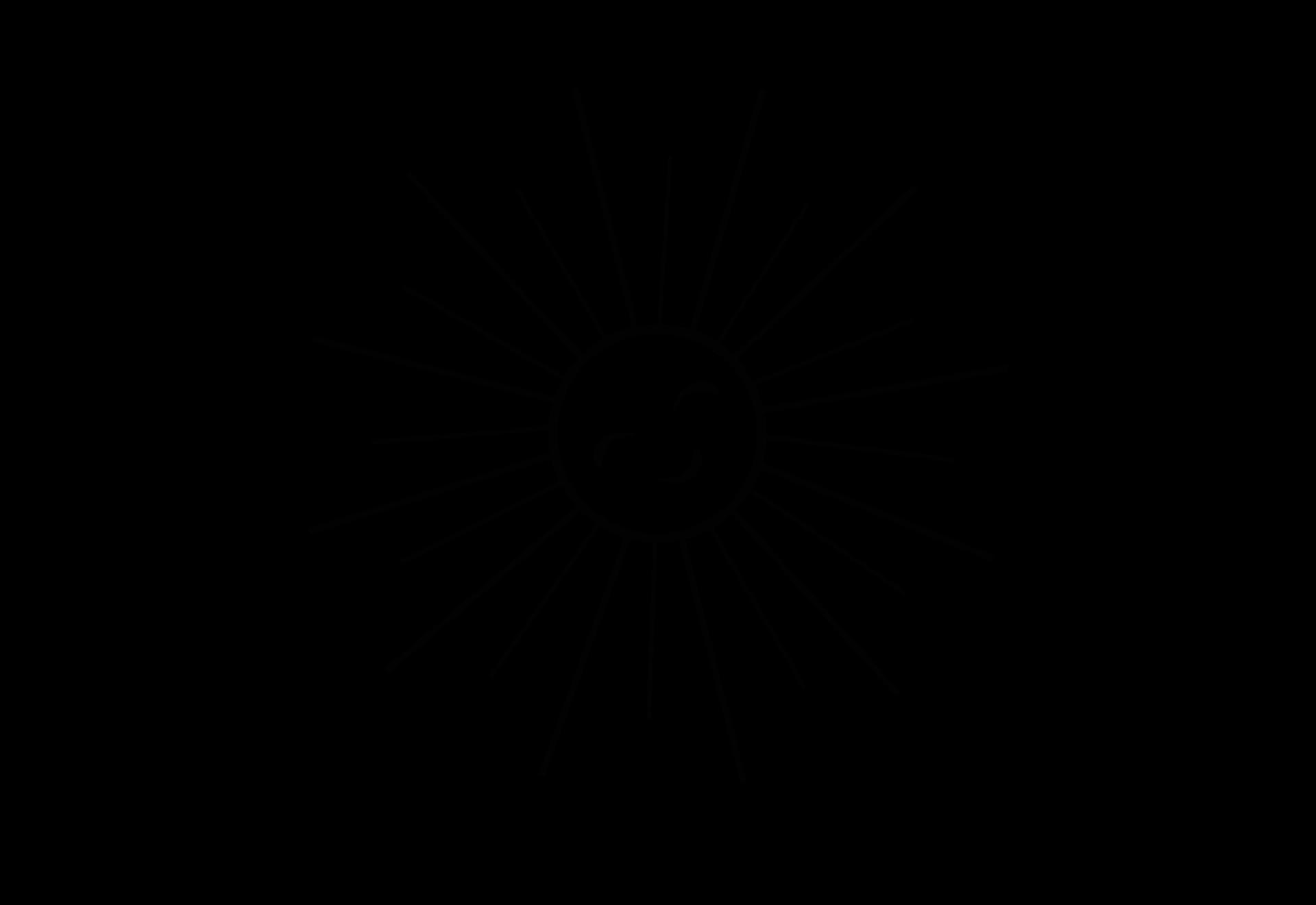 Make a sun print (video)